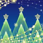 クリスマスの雰囲気作りに最適な、イルミネーションのお店!