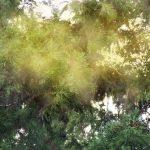 花粉症の対策・改善に役立つアイテム!